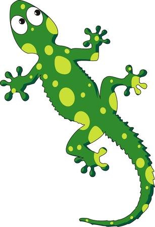 lizard: Ilustraci�n de un gecko verde