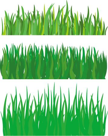 grass Stock Vector - 8280282