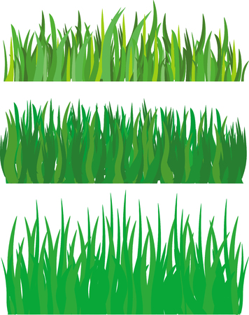 grass Stock Vector - 8280282