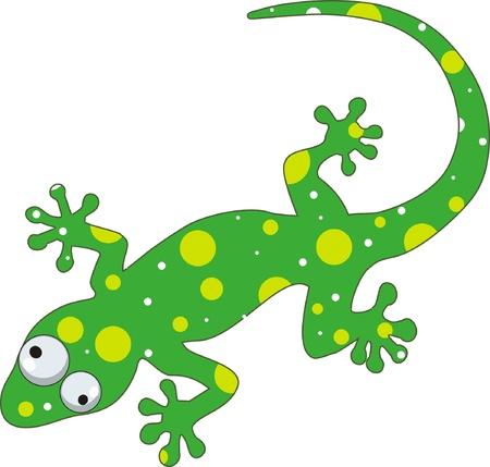 jaszczurka: zielony gecko Ilustracja