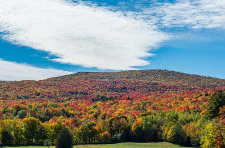 Lush autumn Vermont foliage next to a green grass field
