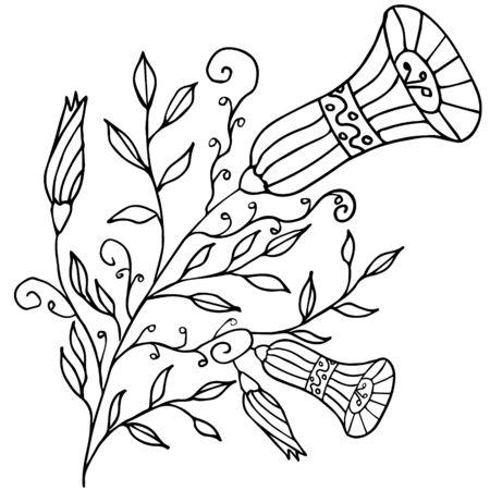 Morning glory flower. Vector outline hand drawn illustration. Coloring page, coloring book