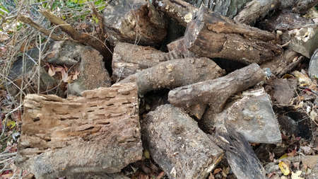 A Pile of Wood Stock fotó