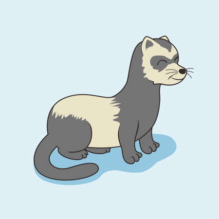 Ferret Cartoon Weasel Stoat Mink