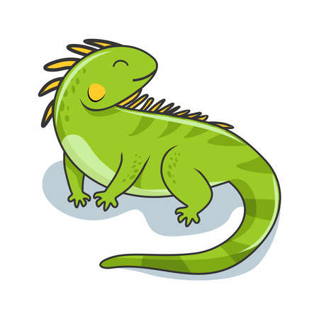 Iguana Cartoon Illustration Cute