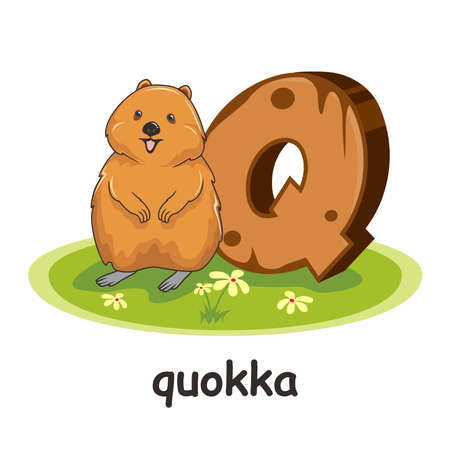 Q for Quokka Cartoon 3D Alphabet Wood Animals