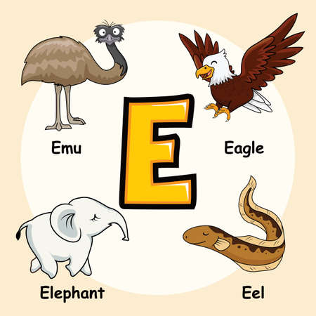 Cute Animals Alphabet Letter E for Eagle Emu Elephant Eel Vettoriali