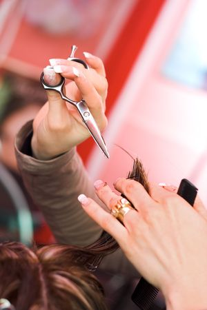 Hair cutting: hair stylist at work with scissors Stock Photo - 2457982