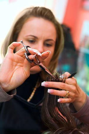 stilist: Hair cutting: hair stylist at work with scissors