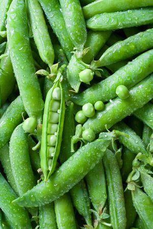 Top view of fresh washed green peas [pisum sativum] photo