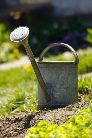 sprinkling: Old rusty sprinkling can in garden