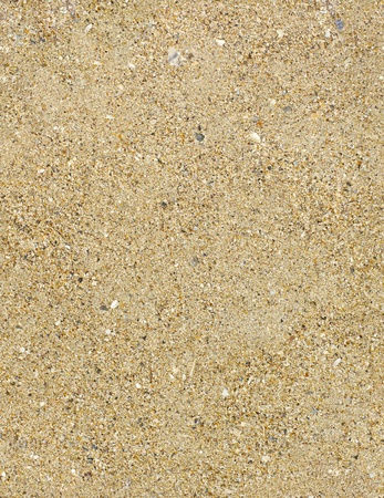 Seamless shore sand texture Stock Photo - 9993551
