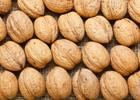 Top view of arranged walnuts photo