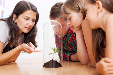 Teacher explains about greenhouse effect and global warming using a plant enclosed into glass tube Stock Photo