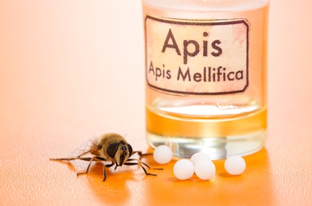 apis: Apis Mellifica homeopathic pills, poison extract and the real bee  on yellow background Stock Photo