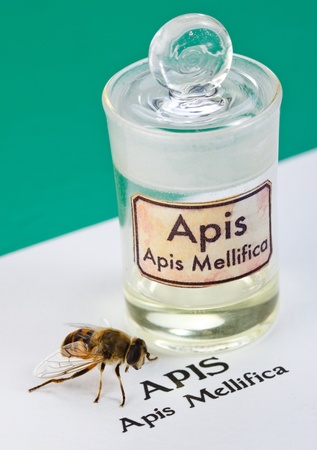 poison bottle: Apis Mellifica sheet, the real bee and poison extract in glass bottle