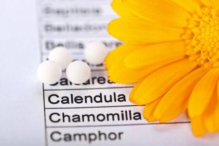 homeopatia: Palabra Calendula Officinalis se centró en la hoja, flor y píldoras homeopáticas en torno