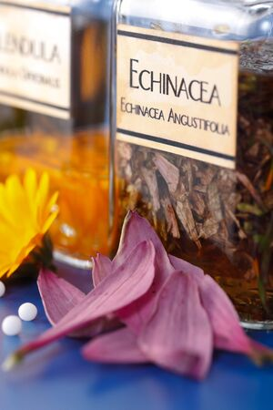 Close view of Echinacea Angustifolia plant extract and the flower petals in front
