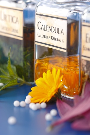 homeopathic: Close view of Calendula Officinalis plant extract and the flower petals in front