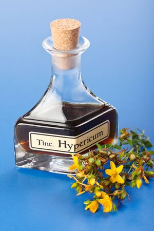 Hypericum flowers and plant extract mother tincture in bottle photo