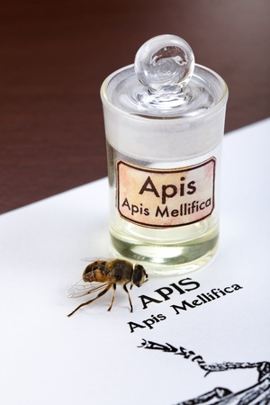 homeopatia: Apis mellifica hoja, la abeja real y extracto de veneno en botella de vidrio Foto de archivo