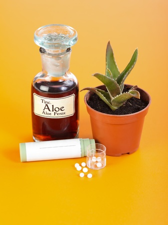Aloe Ferox plant, extract and homeopathic pills on orange background photo