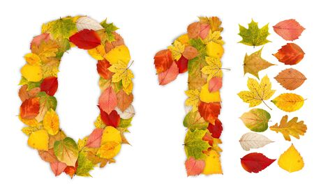 Numbers 0 and 1 made of colorful autumn leaves. Standalone design elements attached photo