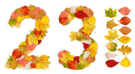 standalone: Numbers 2 and 3 made of colorful autumn leaves. Standalone design elements attached