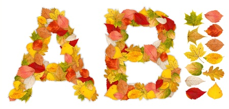 standalone: Characters A and B made of colorful autumn leaves. Standalone design elements attached