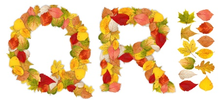 standalone: Characters Q and R made of colorful autumn leaves. Standalone design elements attached