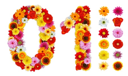 null: Numbers 0 and 1 made of various flowers. Standalone design elements attached