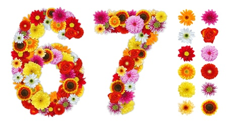 number 6: Numbers 6 and 7 made of various flowers. Standalone design elements attached