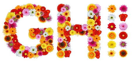 standalone: Characters G and H made of various flowers. Standalone design elements attached Stock Photo