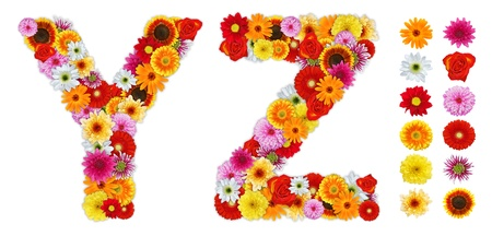 letter a z: Characters Y and Z made of various flowers. Standalone design elements attached Stock Photo