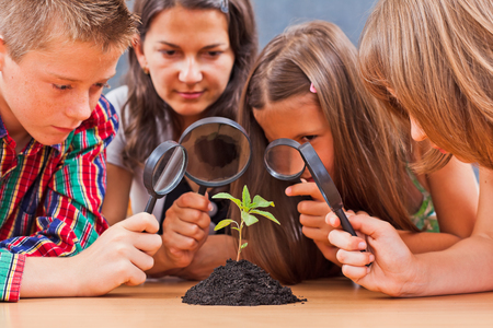 Teacher and students looking at a plant through magnifier Archivio Fotografico