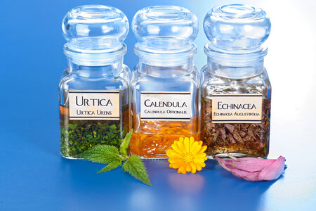 Various plant extract in bottles, Urtica Urens, Calendula Officinalis, Echinacea Angustifolia Stock Photo