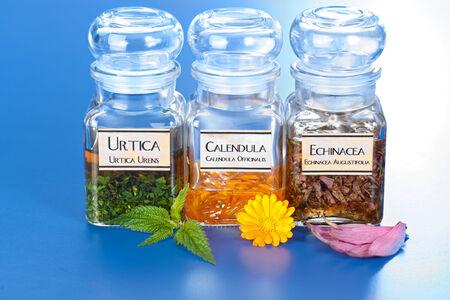 urtica: Various plant extract in bottles, Urtica Urens, Calendula Officinalis, Echinacea Angustifolia Stock Photo