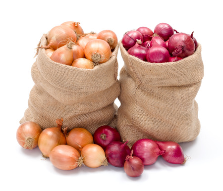 burlap sack: Full burlap bags of red and yellow onions Stock Photo