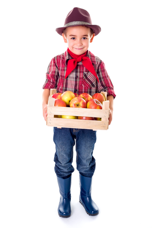 agriculturist: Little agriculturist boy holding fresh apples in crate