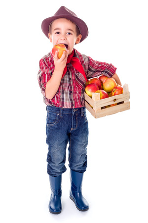 agriculturist: Little agriculturist boy standing with crate full of apples, tasting
