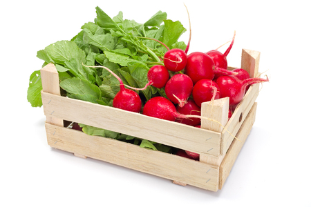 wooden box: Fresh harvested red radish in wooden crate Stock Photo