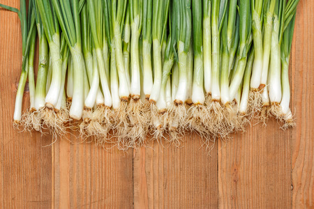 lots: Lots of spring onions on wooden board