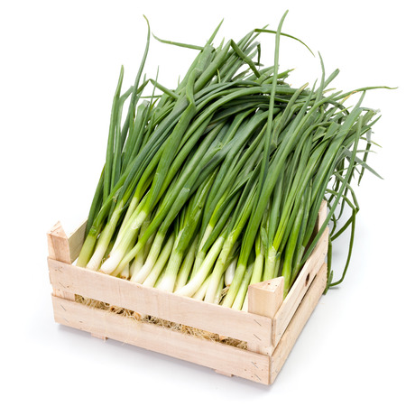 scallion: Harvested fresh spring onions in wooden crate