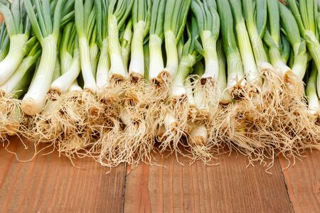 lots of: Lots of spring onions on wooden board