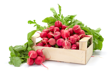 harvested: Fresh harvested red radish in wooden crate Stock Photo