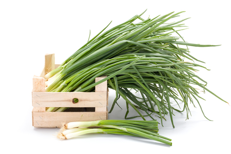 spring onions: Harvested fresh spring onions in wooden crate