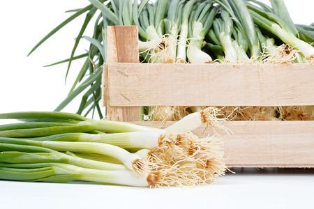 scallion: Macro of fresh scallion bunch near crate