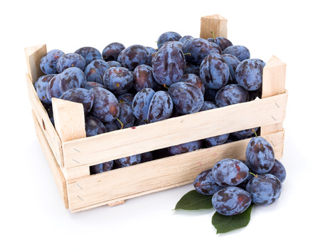 Plums (Prunus) in wooden crate on white