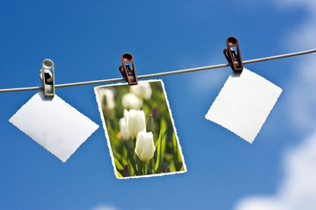 Photos with copy space hanging on a clothesline Standard-Bild