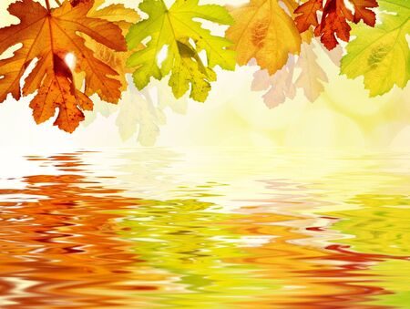 Colored leaves reflecting in water Stock Photo